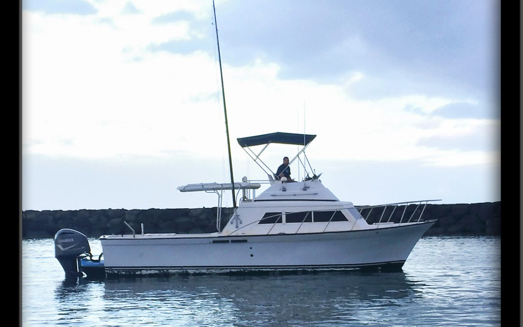 """Welcome Aboard The """"LIA C"""" – Our Newest Sportfishing Boat!"""